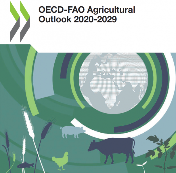 Forside, OECD-FAO Agricultural Outlook 2020-2029