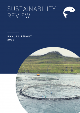 Sustainability review 2020, front page