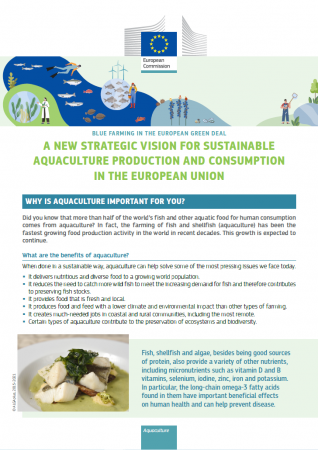Forside, A new Strategic Vision for Sustainable Aquaculture Production and Consumption in The European Union